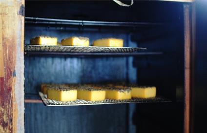 otto3_cheese.jpg